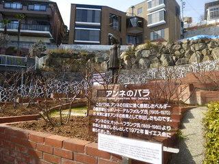 2015-02-28 006.JPG